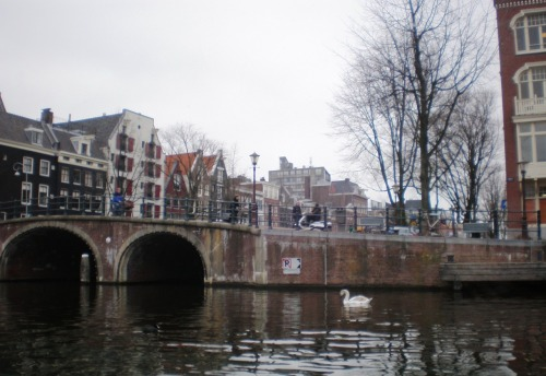 Prinsengracht canal, Amsterdam submitted by: philztea, thanks!