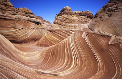 factandaphoto:  The Wave, above, is in Arizona. Its unique appearance was caused by erosion of sandstone during the Jurassic period. But visiting the Wave? That's a trick. The agency which administers in only issues twenty visiting licenses per day, which are selected by lottery. (Photo via Wikimedia Commons)