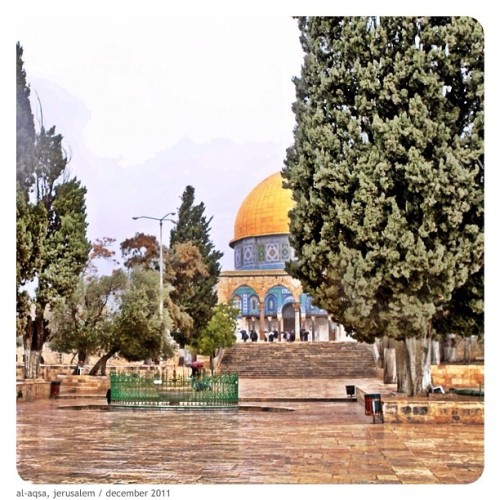 golden dome of the rock. taken inside moslem quarter of palestine. (@can99ih - 2011)