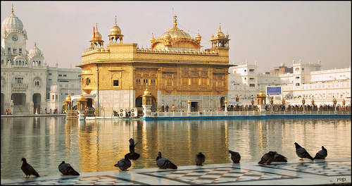 indiaincredible:  The Golden Temple (by y'O'gs)