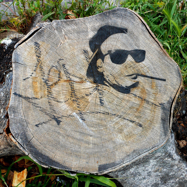 Stump and Stencil by ~db~ on Flickr.