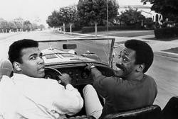 zuleikha:  a-restless-being:  Muhammad Ali and Bill Cosby  Oh dis is cool