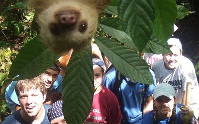 prostheticknowledge:  Sloth photobombs holiday picture [via The Telegraph UK]