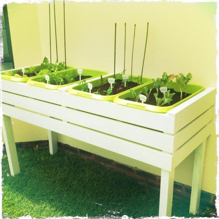 Check out our new custom made veggie/herb garden. This little baby gets 4 hours of sunlight in the afternoon and is working fantastically. It took a few hours to build and then a further 2 days to paint but absolutely worth it. Plus if we ever have to move one day, we can take the whole thing with us. Cost of raw materials; Timber/Screws/nails - R850 Paint - R300 Soil/seeds - R300 Plastic compartments - R200