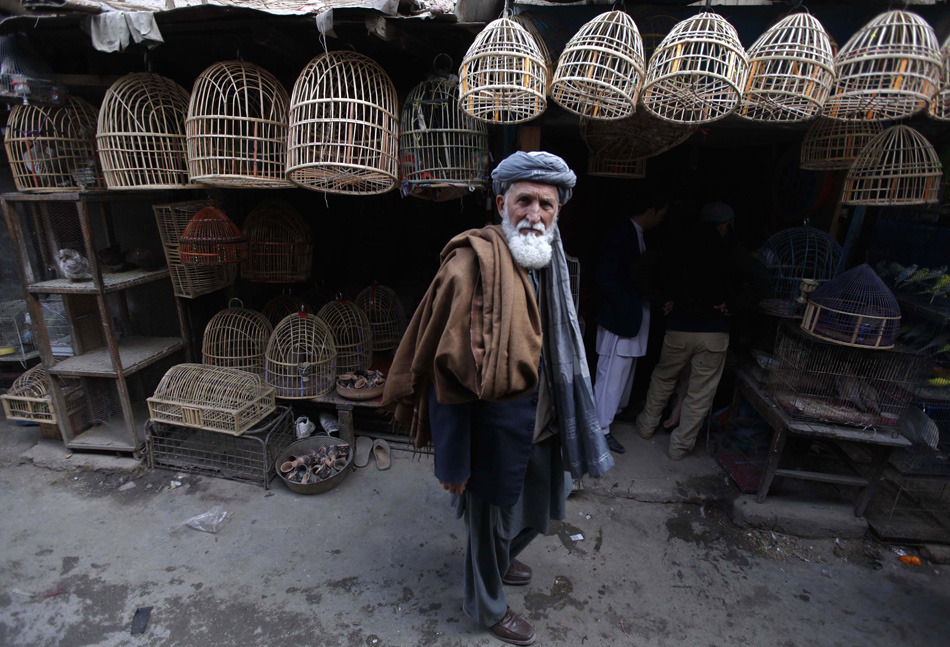 An Afghan man walks in a bird market in Kabul March 29, 2012. [Credit : Omar Sobhani/Reuters]