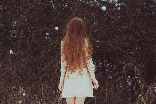 winter bird by laura makabresku on Flickr.
