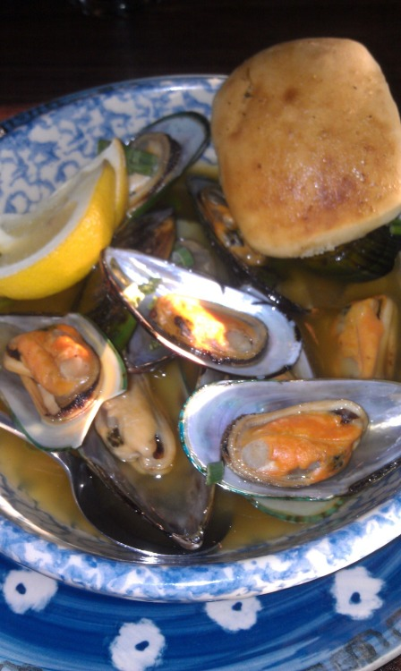 Steamed Mussels with Garlic and White Wine Butter - Blue Cat Brew Pub - Rock Island, IL My folks and I have been going to Blue Cat every Wednesday night for YEARS!  I've recently discovered that they have delicious mussels.  Especially delicious when paired with one of bartender Dr. Bob's amazing cocktails.