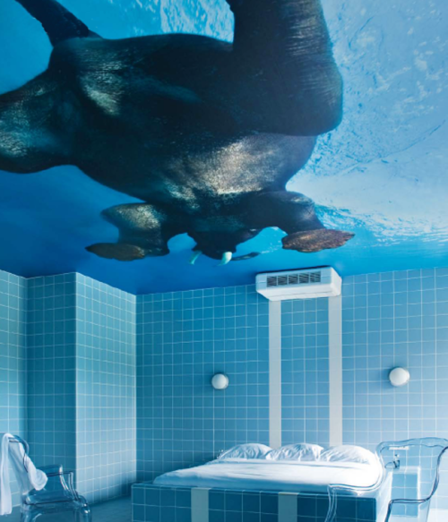 leonarto:  The elephant swims on a bathroom ceiling in the Teaching Hotel Chateau Bethlehem in Maastricht, Netherlands.