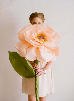 calloway:  giant paper flowers from ruche