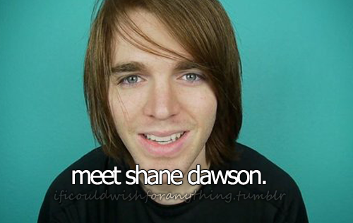 If I could wish for anything… I would wish to meet Shane Dawson.