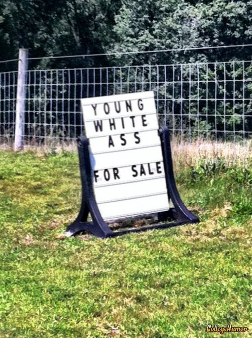 collegehumor:   Young White Ass for Sale   Why chase it when you can buy it right here?