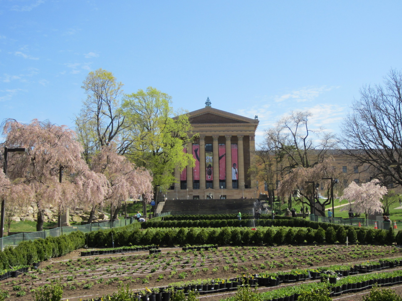 philamuseum:  Watch this space! 7,000 plants in red, yellow, blue and white will soon be bursting in vertical, horizontal, and diagonal lines between the West Entrance and the Italian Fountain. The idea for this garden was conceived by conceptual artist Sol LeWitt in 1981—his vision is at last being realized this summer.  With the weather we've been having in Philly, however, it may happen even sooner.   Sol Lewitt comes to life with plants?! Be still my beating heart! Paging MassMoCA! ~AR