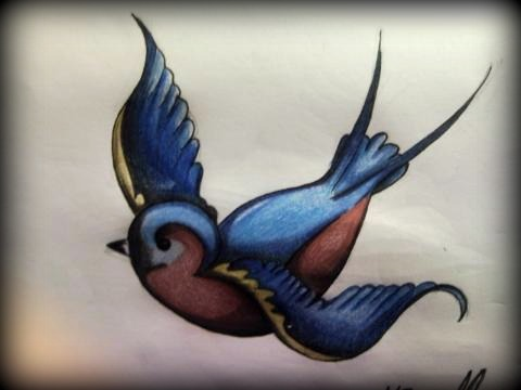 Coloured swallow.