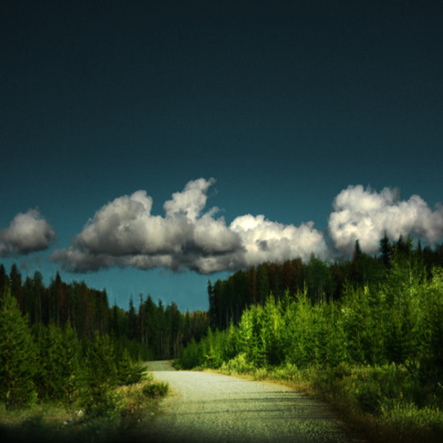 agoodthinghappened:  A road less traveled by Soffia Gisladottir on Flickr.