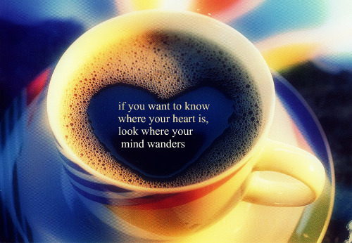 If You Want To Know Where Your Heart Is Look Where Your: If You Want To Know Where Your Heart Is, Look...