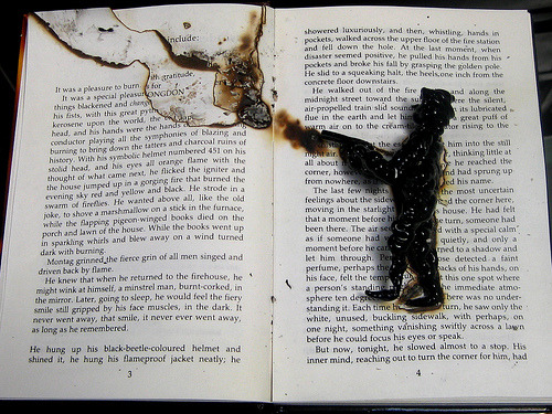 teachingliteracy:  Fahrenheit 451 (by Sabine Little)  what a lovely way to burn… Buy Fahrenheit 451 here.