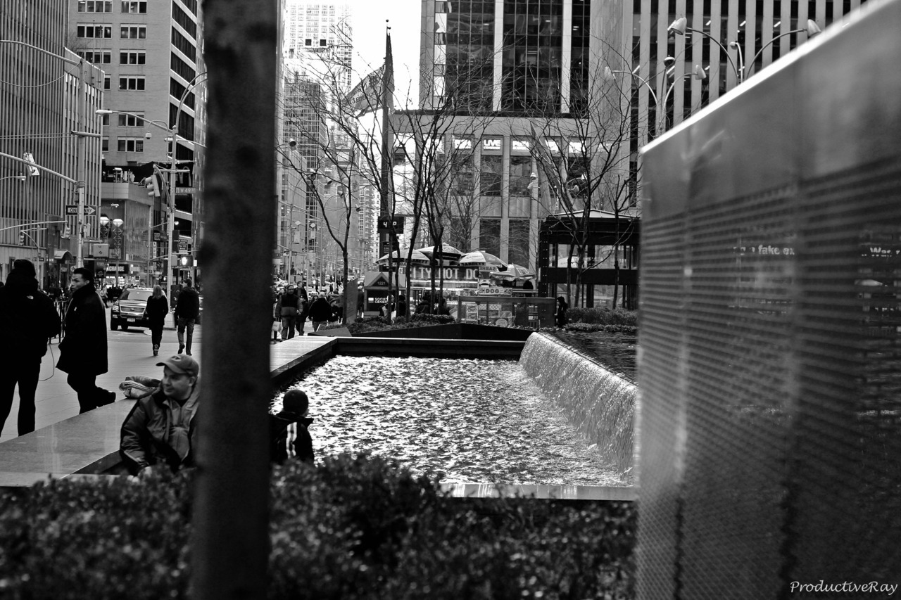 Midtown Beauty (Black & White)