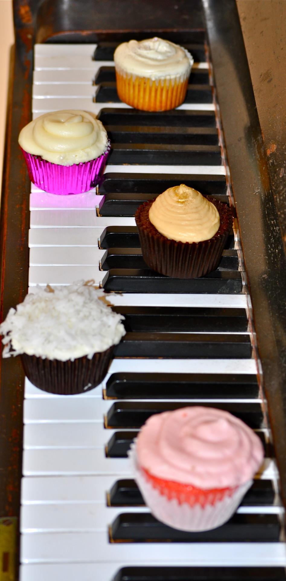 Variety (front to back): strawberry cupcakes, dark chocolate with coconut frosting, irish cream cupcake, red velvet, vanilla made by: Maura Bogni-Rodriguez photographed by: Audrey Jonoubeh
