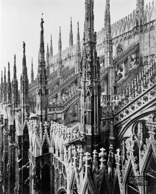 The roof of Milan Cathedral (Duomo di Milano)