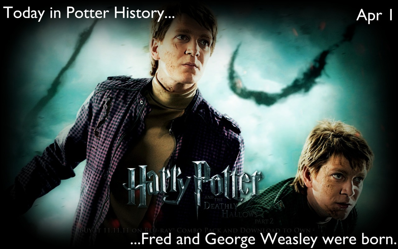 today-in-potter-history:  Today in Potter History, Fred and George Weasley were born.