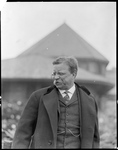 Theodore Roosevelt, 1904 Boston Public Library, Leslie Jones Collection