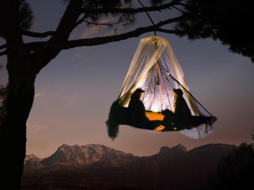Tree camping, I'm a bit jealous of those people camping in a tree in the beautiful nature.