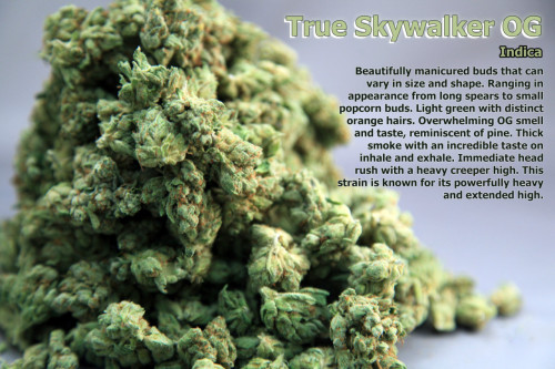 thatsgoodweed:  OG True SkyWalker