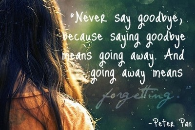 Never say goodbye..
