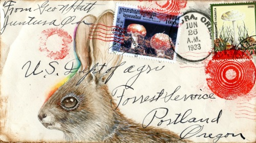 inkheadbunny and shrooms postcard, gouache, 2012 mail art originals and postcards on Etsy