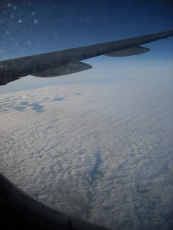 siriuslymeg:  I don't know about you, but I like pictures of clouds as seen from the window of a plane.  This was when we were flying over Ireland.