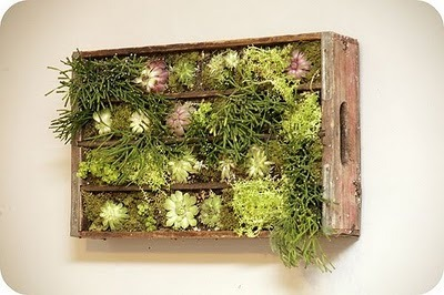 birdsmakegoodneighbors:  Inspired to Share: DIY Vertical Garden  I should do this, but as a spice garden!
