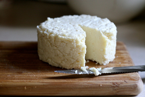 shyft:  Pressed Lemon Cheese by Chiot's Run on Flickr.