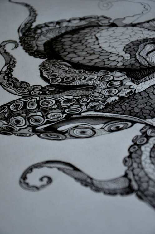 eatsleepdraw:  Part of a pretty octopus I started recently.Head over to sarsqr.tumblr.com to see some more, or come find me on instagram (sarsar) :)