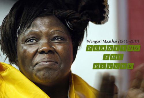 beingblog:  The Kenyan environmentalist and women's rights activist Wangari Maathai's birthday is today. She would have been 72. Rest her spirit in whatever tree or hummingbird it may inhabit. ~Trent Gilliss, senior editor