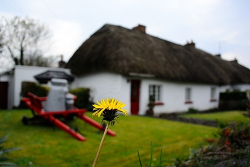 The runner-up town I like - Adare Cottage Village.