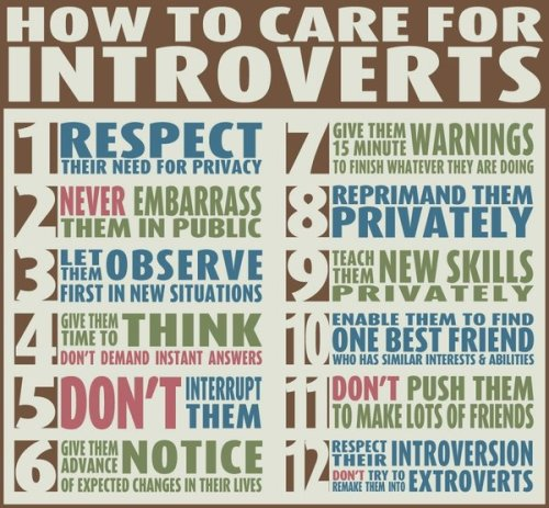 Are you an introvert?