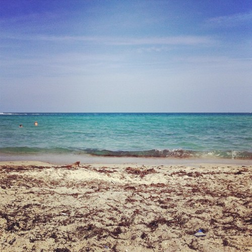 Taken with Instagram at Hollywood Beach