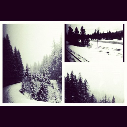snowy scenery in oregon (Taken with instagram)