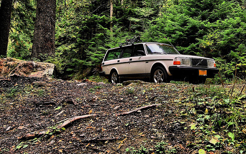 Volvo Wagon in the Woods (by Mista Yuck)
