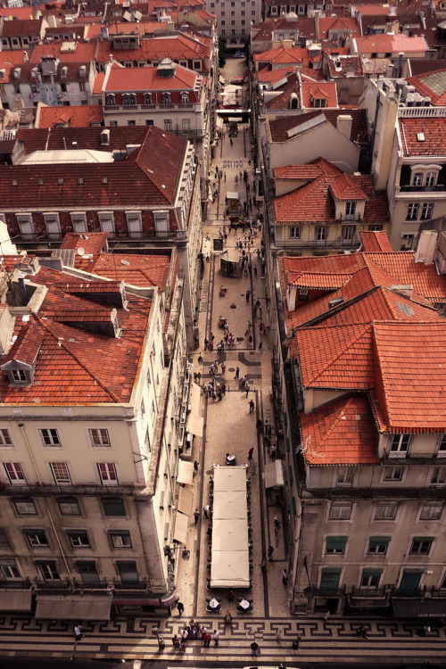 ninbra:  The roofs of Lisbon, Portugal.