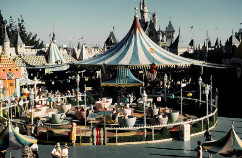victoriainwonderland:  The Teacups in the 50s