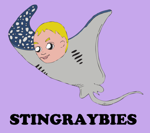 STINGRAYBIES /stiŋ-rā-bē/:  1. Babies who resemble sting rays (family: Dasyatidae Babae)  The mortal enemy of Steve Irwinbies, stingraybies are known for having one or more large sharp barbed dorsal spines near the base of the whiplike tail capable of inflicting severe wounds. Not to be confused with Sting's Rabies, a severe medical condition belonging to English musician Sting.