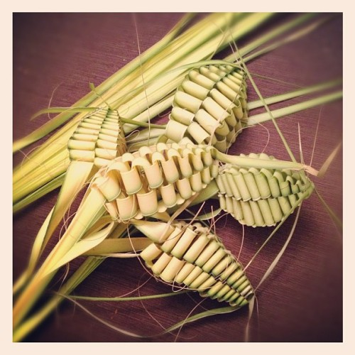 Palm Sunday.  (Taken with instagram)