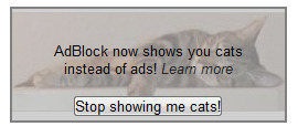 Maybe now some of you will start using AdBlock.