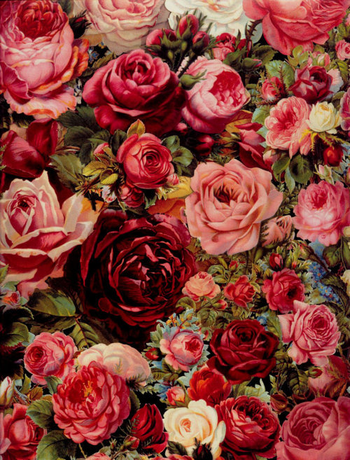 w4terf4lls:  This is so pretty. I love flower paintings like this.