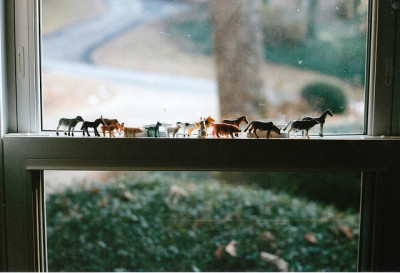 untitled by mary_robinson on Flickr.