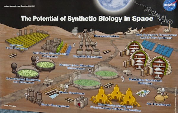 futurescope:  The Potential of Synthetic Biology in Space  A lot of proposed synthetic biology applications can seem pretty out there, but some are really out there. NASA is currently advertising open postdoctoral positions in synthetic biology, with particular emphasis on food production in space. Engineered organisms have the potential to do lots of things that would be useful for space colonists, from producing food and fuel to treating wastewater. Because organisms replicate themselves, future astronauts would only have to bring some spores and seeds and empty bioreactors, the organisms would do the rest of the work. […]  [via] [Synthetic Biology @ NASA] [photo credit by Matt Mansell]  I fully endorse these applications of synthetic biology, and I would love to help develop them. If only we had programs funded that could put them to use …