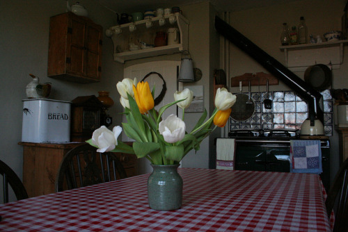 """Spring in the kitchen""Paul Jackson"