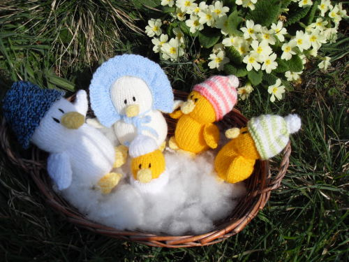prettycrafts:  My 89 year old Mum knitted these ducklings for Easter.