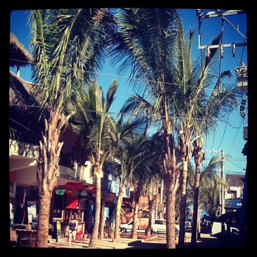 Breakfast view in Sayulita  (Taken with instagram)